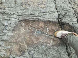 Giant Footprint Bolivia